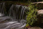 fern creek falls